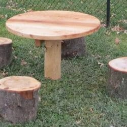 Log Table with Stump Seats