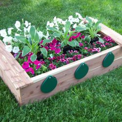 Garden Box with Peep Holes - Cedar