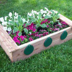 Garden, Box with Peep Holes, Cedar