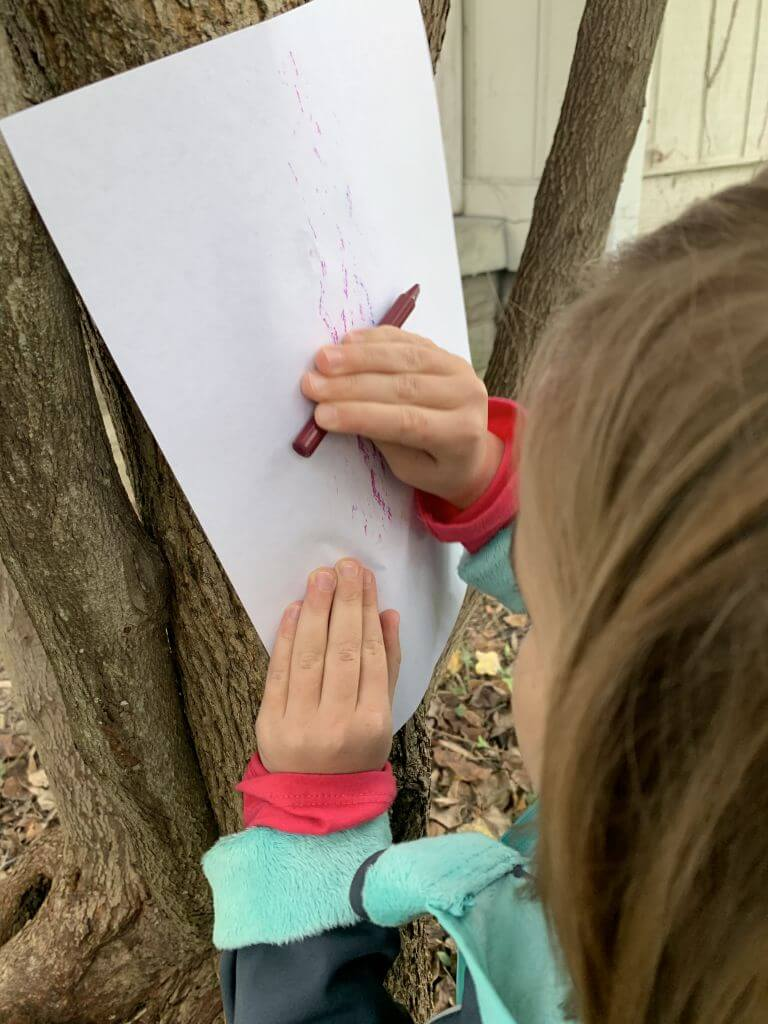 Child doing outdoor nature crayon rubbings on a tree